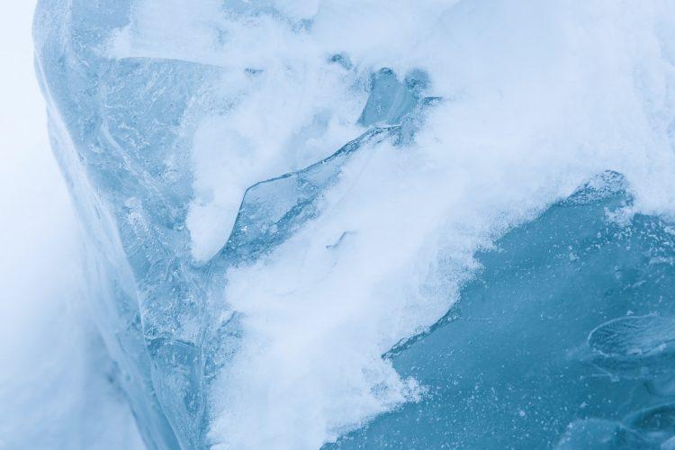 Que faut-il penser de la gelée royale congelée au juste ?