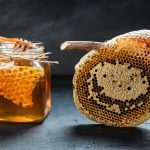 Les pouvoirs du miel : quelles sont ses vertus thérapeutiques ?
